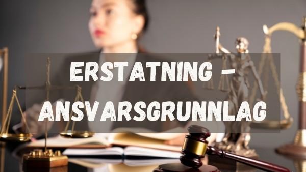 En advokat som sitter ved et bord å leser om ansvarsgrunnlag